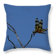 More Jeweled Wings Throw Pillow