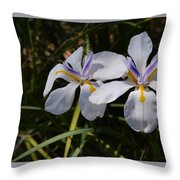 More Light And Color Throw Pillow