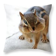 More Nuts Please Throw Pillow