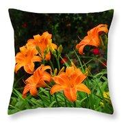 More Orange Daylilies Throw Pillow