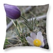 More Purple Flowers Throw Pillow