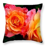 More Roses For Anne Catus 1 No. 1 H B Throw Pillow