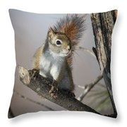 More Seeds Please Throw Pillow