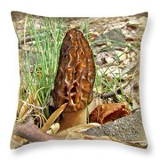 Morel Mushroom - Green Lane Pa Throw Pillow