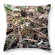 Morels A Plenty  Throw Pillow