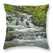 Morgan Falls 4584 Throw Pillow