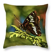 Mormon Metalmark Throw Pillow