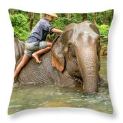 Morning Ablutions 3 Throw Pillow