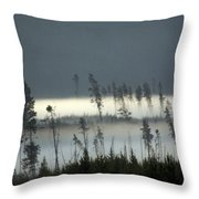 Morning Along The Madison Throw Pillow