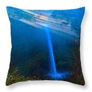 Morning At South Falls Throw Pillow
