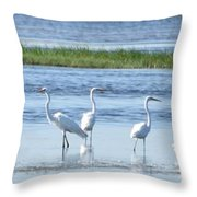 Morning At The Refuge Throw Pillow