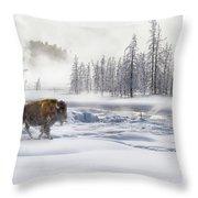 Morning Bison 4  7912-4 Throw Pillow