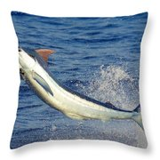 Morning Blues Throw Pillow