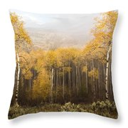 Morning Burn Throw Pillow