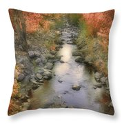 Morning By The Creek Throw Pillow