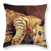 Morning Cat Throw Pillow