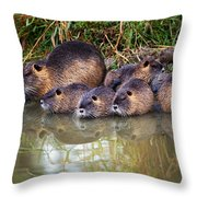Morning Clean Up Throw Pillow