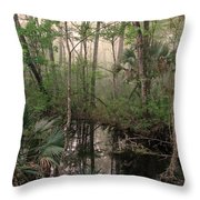 Morning Comes Softly Throw Pillow