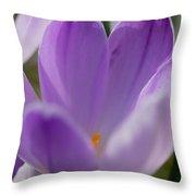 Morning Crocus One Throw Pillow