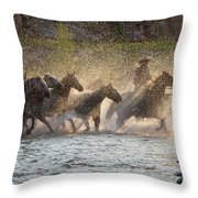 Morning Crossing Throw Pillow
