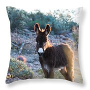 Morning Curiosity Throw Pillow