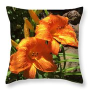 Morning Daylilies Throw Pillow