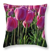 Morning Dew Tulips Throw Pillow