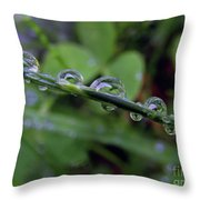 Morning Dewdrops 2 Throw Pillow