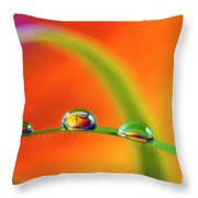 Morning Dewdrops Throw Pillow