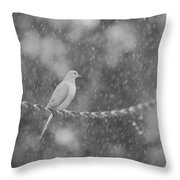 Morning Dove In The Rain Throw Pillow