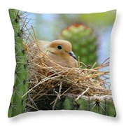 Mourning Dove Nest In A Cactus Throw Pillow