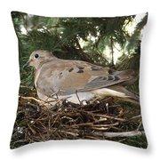 Morning Dove On Her Nest 2 Throw Pillow
