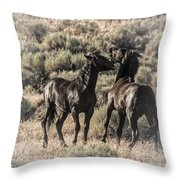 Morning Dust Up Throw Pillow