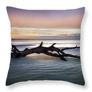 Morning Ecstacy Throw Pillow