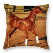 Morning Exercise Throw Pillow