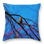 Morning Finch Throw Pillow