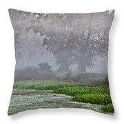 Morning Fog At Brazos Bend Throw Pillow