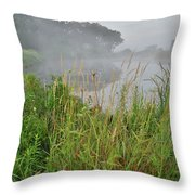 Morning Fog On Glacial Park Pond Throw Pillow