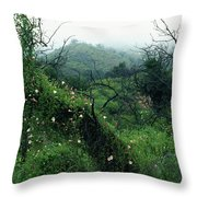 Morning Glories In Fog Throw Pillow