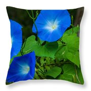 Morning Glory Family Throw Pillow