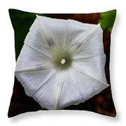 Morning Glory White Throw Pillow