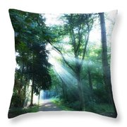 Morning Happiness  Throw Pillow