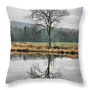 Morning Haze And Reflections Throw Pillow
