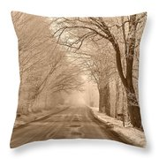Morning Ice And Fog Throw Pillow