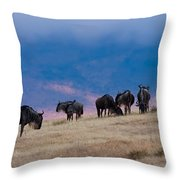 Morning In Ngorongoro Crater Throw Pillow