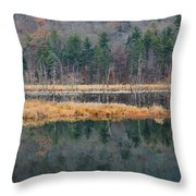 Morning In The Mirror Throw Pillow