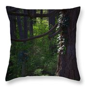 Morning In The Pacific Northwest Throw Pillow