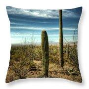 Morning In The Sonoran Desert Throw Pillow