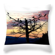 Morning In The Rockies Throw Pillow