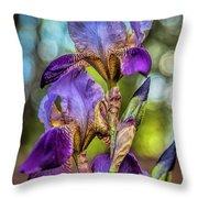 Morning Iris Throw Pillow